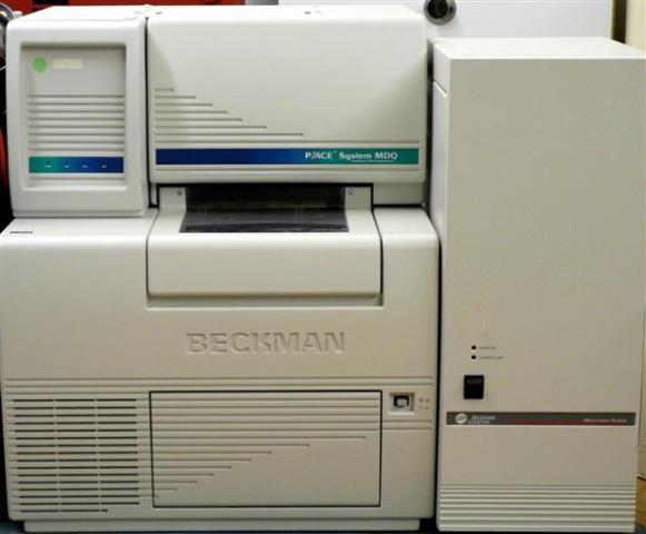 CAPILLARY ELECTROPHORESIS BECKMAN / P-ACE SYSTEM MDQ DAD (9116)