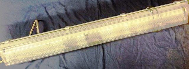 NEON LAMP ZUMTOBEL / IFP PM 2X36W C (7832)