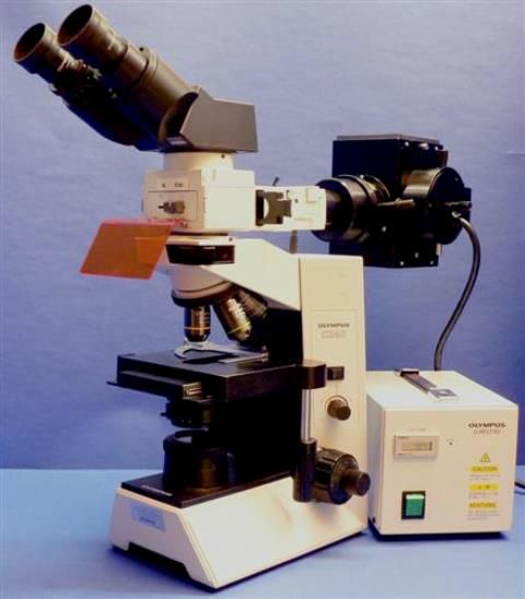 MICROSCOPE BINOCULAIRE FLUORESCENCE OLYMPUS / CX40 RF200 IMMUNO FLUO (31504)